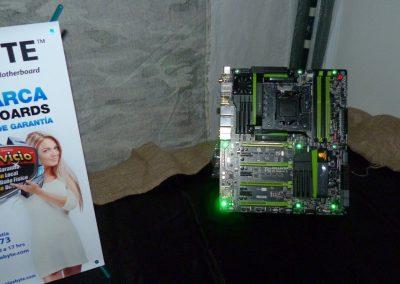 tecnofields2013-62