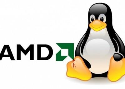 AMD_Linux
