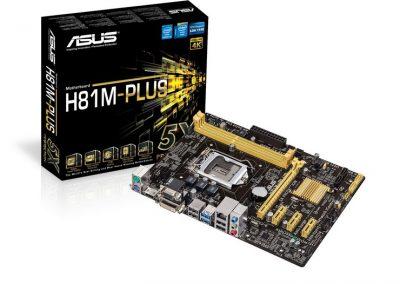 H81M-PLUS