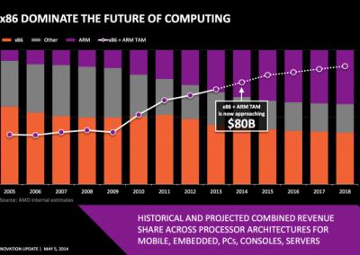AMD_Project_Skybridge_03
