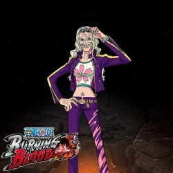 one-piece-burning-blood-support-02